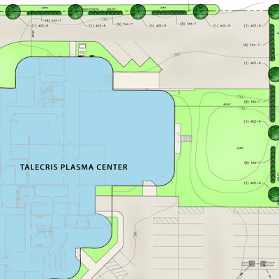 455-001 - Talecris Plasma Center landscape plan-10x10 Square
